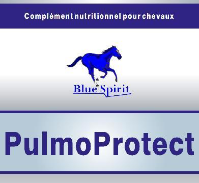 PulmoProtect 1 litre